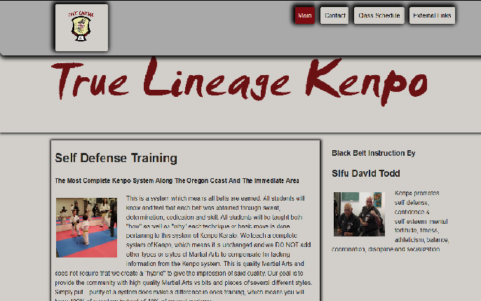 Picture of a site that DimickDesign LLC Designed for True Lineage Kenpo Karate